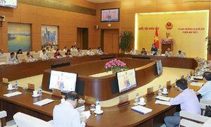 Thường vụ Quốc hội cho ý kiến sửa đổi Bộ luật hình sự
