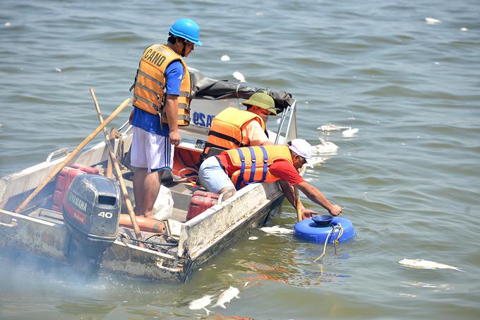 Hàng chục máy bơm ôxy làm sạch nước hồ Tây