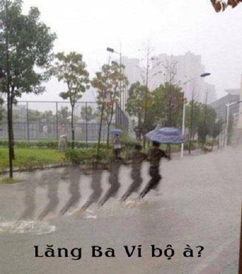 Cao thủxuất hiện giữa cơn mưa.