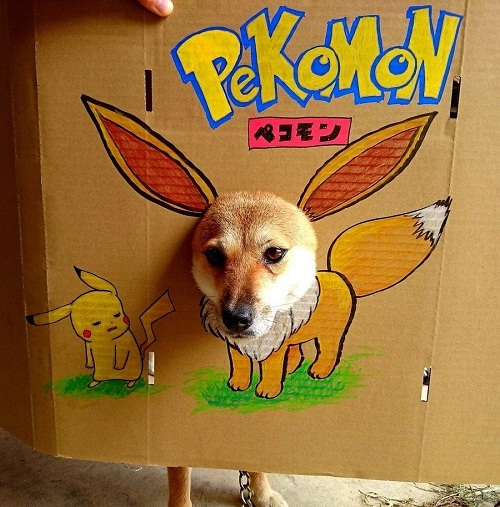 Pokemon thế hệ mới.