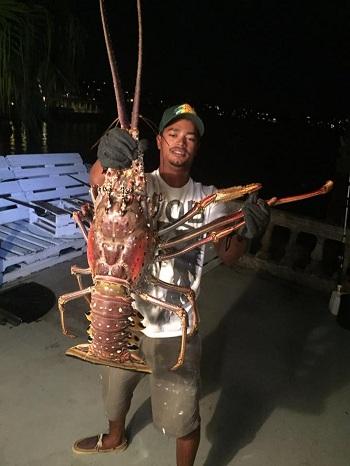 tom-hum-6-kg-bi-bao-cuon-vao-bo-can-cau-ngu-dan