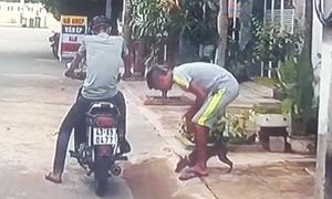 Hai cẩu tặc trộm chó bằng tay không