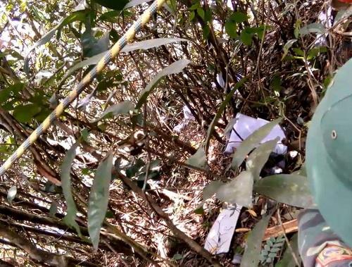 Nhiều mảnh vỡ bị vang tung tóe ở hiện trường máy bay rơi. Ảnh: CTV
