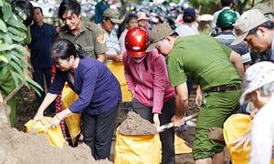 200 người 'cứu' chục căn nhà khỏi sạt xuống sông Đồng Nai