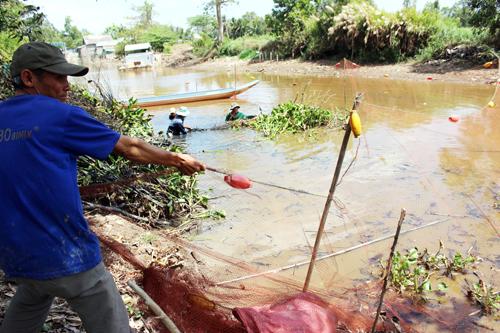 Bủa lưới chụp đìa thu hoạch cá đồng sau khi thỏa thuận giá cả thầu đìa. Ảnh: Phúc Hưng