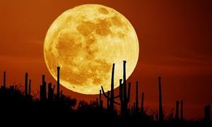 Người Việt sắp được ngắm siêu trăng lớn nhất thế kỷ