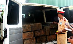 Ngụy trang thành xe đưa tang để chở gỗ lậu