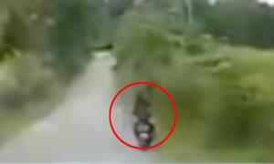 Đường vắng, người phụ nữ chạy xe máy lao vào bụi rậm
