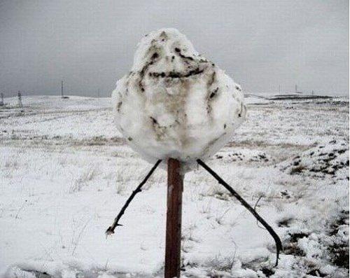 Người tuyết cô đơn.