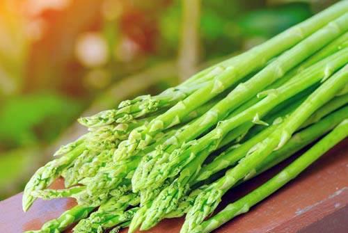 Măng tây xanh  không chỉ giúp bà con Bắc Ninh tăng thu nhập mà còn giúp nền kinh tế địa phương phát triển bền vững. Ảnh: mangtaybacninh