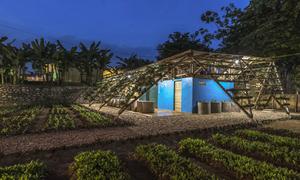 Vườn vệ sinh 'đẹp như mơ' của học sinh nghèo Điện Biên