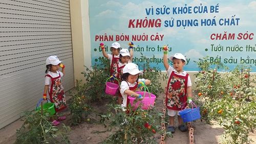 truong-mam-non-hien-dai-danh-cho-tre-o-sai-gon-xin-bai-edit-3