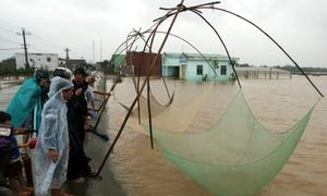Người dân Quảng Nam kéo vó bắt cá mùa lũ