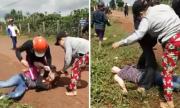 5 phụ nữ đánh ghen kéo lê, cắt tóc nạn nhân giữa đường
