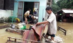 Lũ rút, người dân Bình Định về nhà dọn tài sản hư hỏng