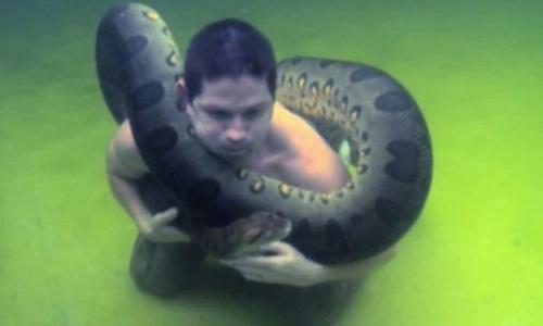 tran-anaconda-khong-lo-quan-quanh-co-nguoi-dan-ong-duoi-nuoc