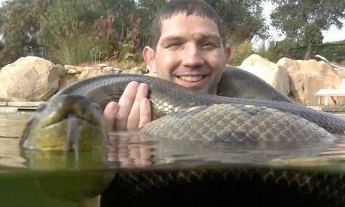 tran-anaconda-khong-lo-quan-quanh-co-nguoi-dan-ong-duoi-nuoc-3