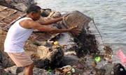 Xả rác- sự hồn nhiên độc ác