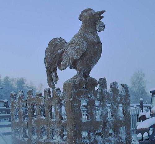Bức tượng gà cao 3,5 mét được dựng bằng phân gia súc. Ảnh: Instagram