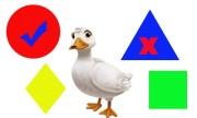 Ai có đủ tự tin so tài phân biệt hình khối với một con vịt?
