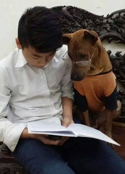 Muốn thành công phải chăm đọc sách.