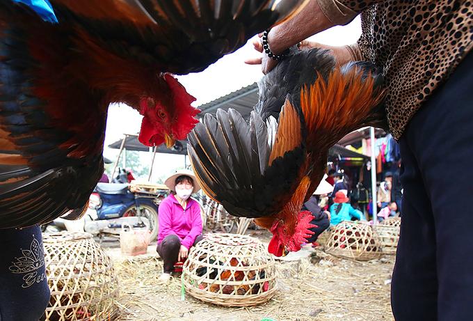 Chợ quê truyền thống Bắc Bộ họp phiên cuối năm