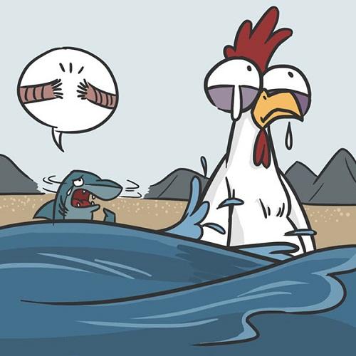 Nhân năm Đinh Dậu, gà than thở về cuộc đời sóng gió của mình.