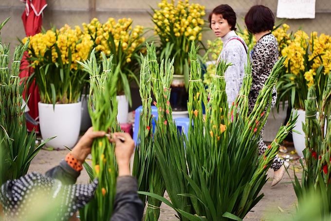 'Biển người' đổ về chợ hoa lớn nhất Hà Nội