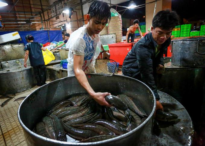 Chợ cá lóc lớn nhất Sài Gòn nhộn nhịp ngày vía Thần tài
