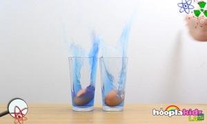 Giải thích định luật quán tính qua thí nghiệm trứng rơi