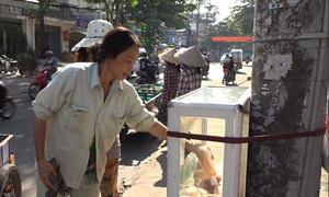 Tủ bánh mì mỗi ngày trăm ổ của nữ Việt kiều