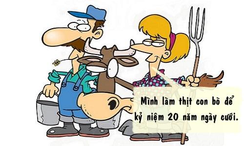 Bò chịu trách nhiệm cho hôn nhân của chủ