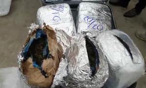 Đơn hàng gần 200 kg ma túy 'lá khát' qua sân bay Nội Bài