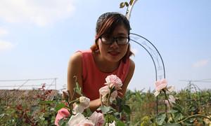 Nữ 9x kiếm tiền tỷ mỗi tháng từ vườn hồng