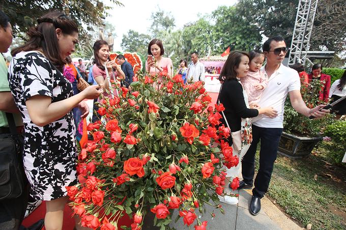 Chen chân xem hoa héo và cây nhựa ở Lễ hội hoa hồng