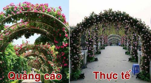 cha-me-ong-doan-ngoc-hai-tung-20-nam-buon-ban-via-he-nong-tren-mang-xh-1
