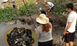 Hai cao thủ giật cá rô liên tục trên sông Sài Gòn