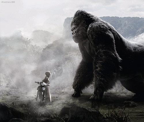 Đối thủ của King Kong ở Việt Nam.