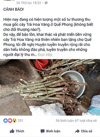 qua-facebook-giam-doc-so-canh-bao-nan-chay-mau-goc-che-hoa-vang
