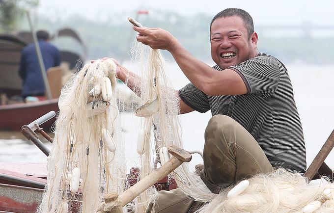Đánh bắt cá mòi trên sông Hồng