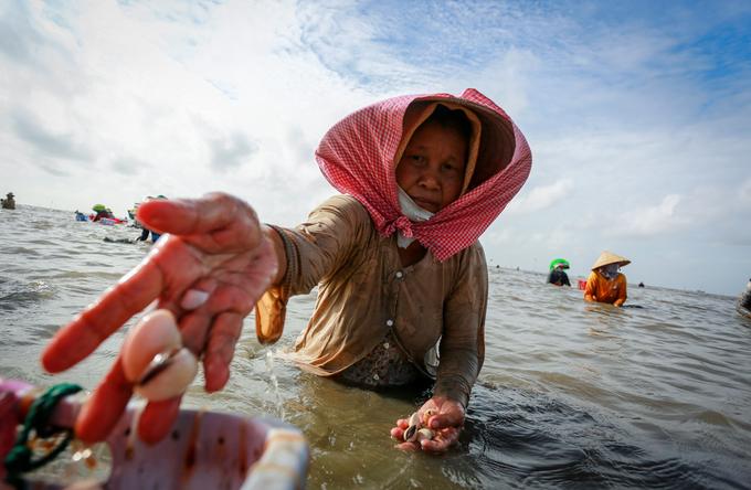 Hàng trăm người dầm mình dưới biển cào nghêu ở Cần Giờ