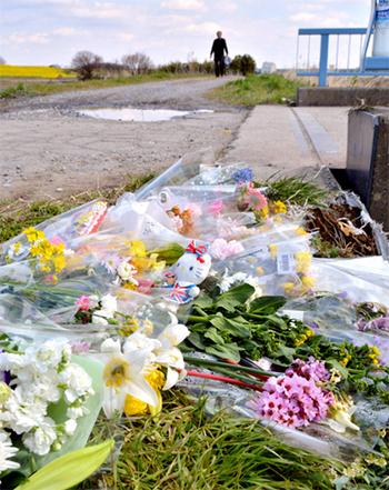 Hoa, kẹo và thú bông tưởng niệm Linh bên bờ kênh ởở thành phố Abiko, tỉnh Chiba