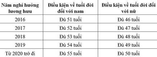 nhieu-nguoi-ve-huu-som-de-tranh-dong-them-5-nam-bhxh-1
