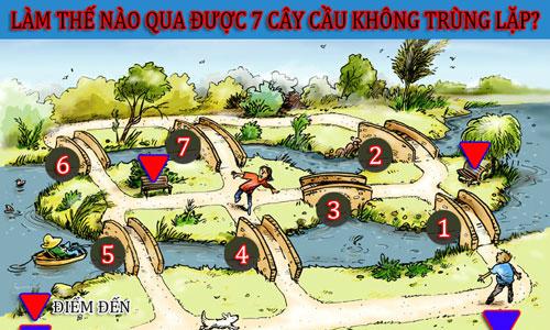 lam-the-nao-qua-duoc-7-cay-cau-khong-trung-lap