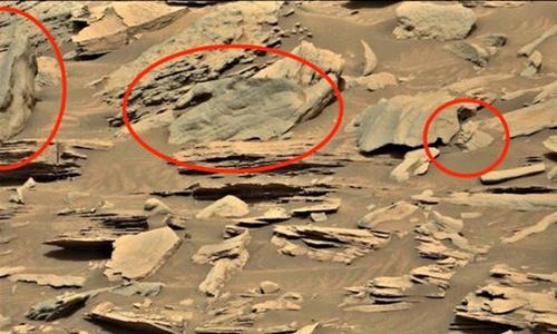 Waring cho rằng đây là hình ảnh bàn tay và khuôn mặt người trên sao Hỏa. Ảnh: Daily Express