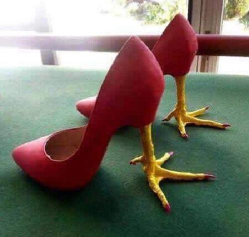 Mốt giày năm con gà.