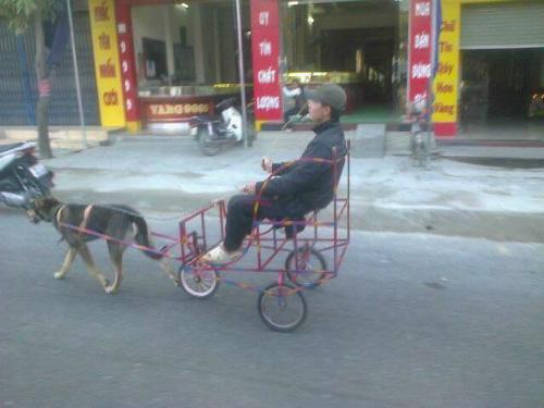 Xe ba bánh chạy bằng động cơ bốn chân.
