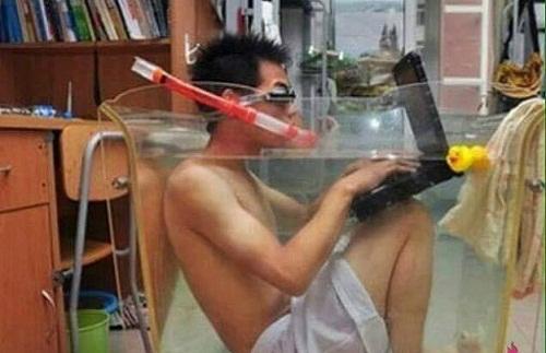 Thiết kế bể bơi cho cả người và laptop.