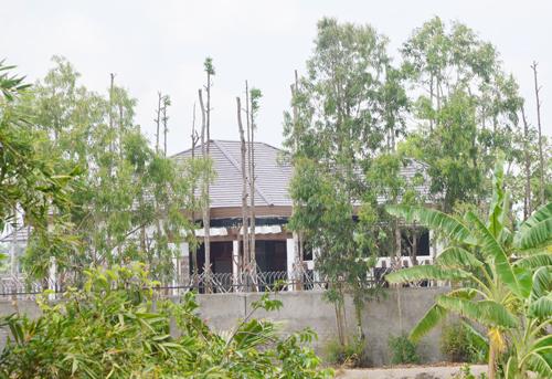 Đứng từ xa phía ngoài cũng có thể thấy nhiều cây xanh được trồng bên trong khuôn viên đã tuôi tốt. Ảnh: Nhật Lương.