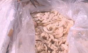 1,6 tấn thực phẩm bốc mùi đưa ra Hà Nội tiêu thụ